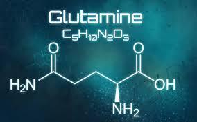 عوارض و فواید قرص گلوتامین- آسمان فیتنس