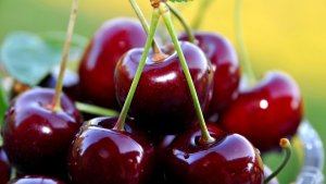 میوه ها و تاثیرات آن ها در بدنسازی قسمت دوم