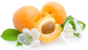 میوه ها و تاثیرات آن ها در بدنسازی