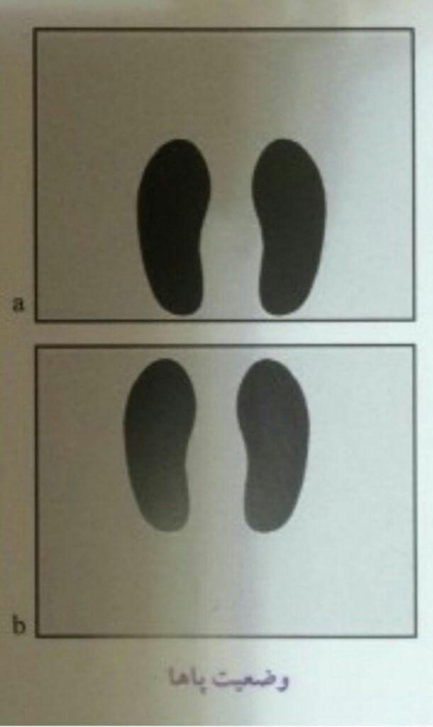 پاها در حرکت پرس پا