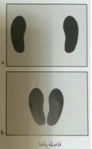 آموزش تصویری پرس پا