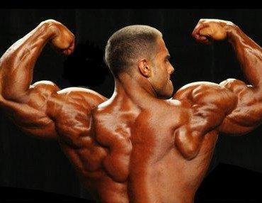 رشد و حجم عضلات